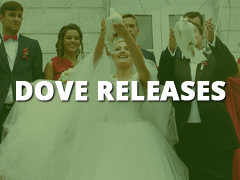 Dove Releases-