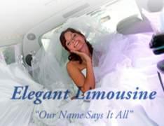 Elegant Limousine-Elegant Limousine