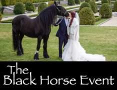 The Black Horse Event-The Black Horse Event