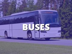 Buses-
