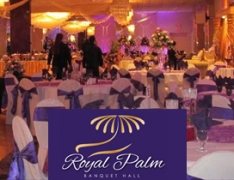 Royal Palm-The Royal Palm