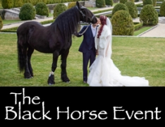 The Black Horse Event-The Black Horse Event