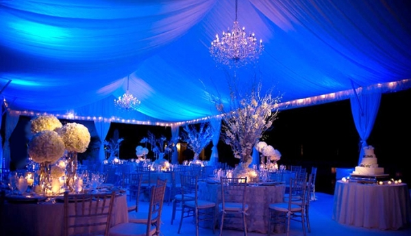 Under the Stars Events