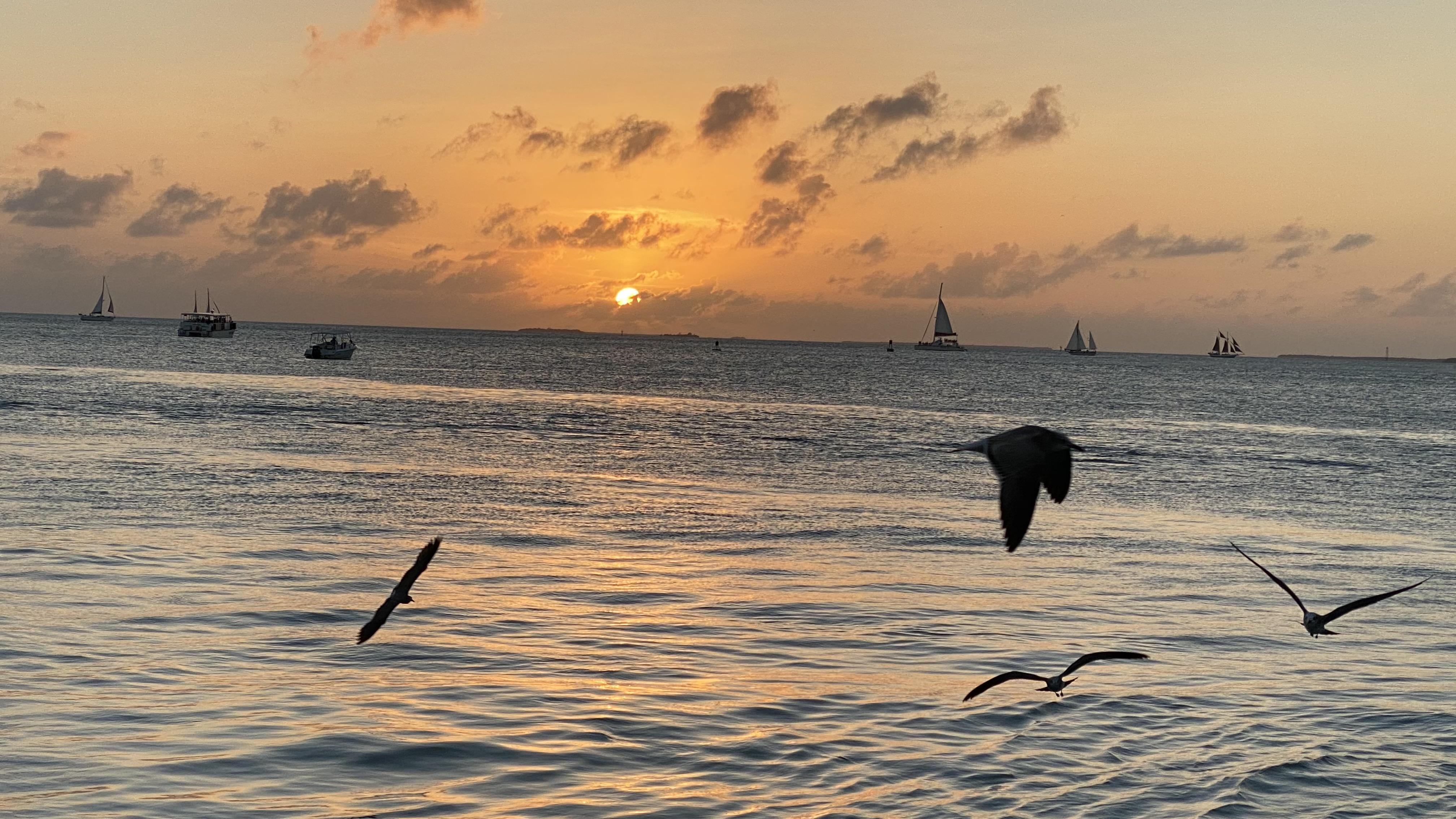 Domestic Honeymoons - Key West Style