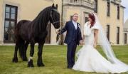Fairytale Fantasy Wedding: The Black Horse Event