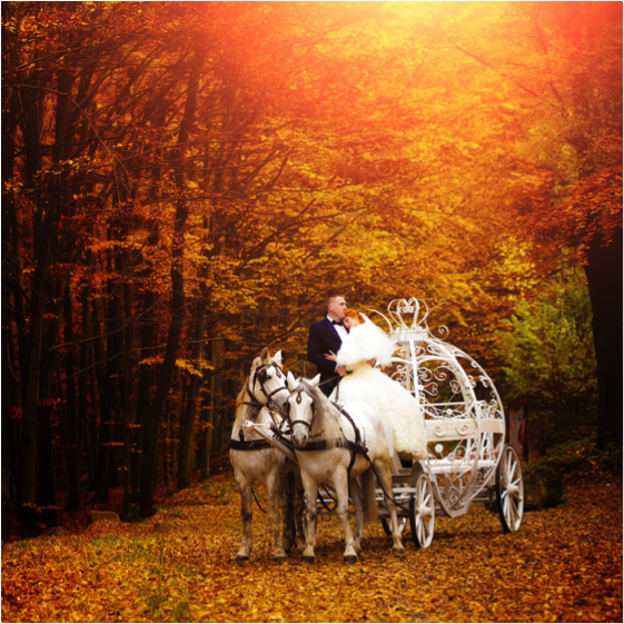 Fashionable Fall Wedding Festivities