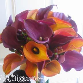 Purple Flower Picture on Wedding Forums   Wedding Forums   Brides Helping Brides