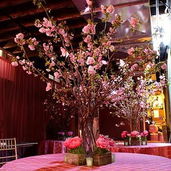 Re Cherry Blossom Centerpieces ive only seen in pics and i think theyre