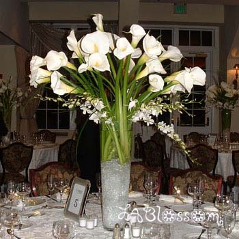 White flowers centerpieces images flower decoration ideas brides helping brides helpi need ideas for white flowers and i need ideas for white flowers mightylinksfo Images