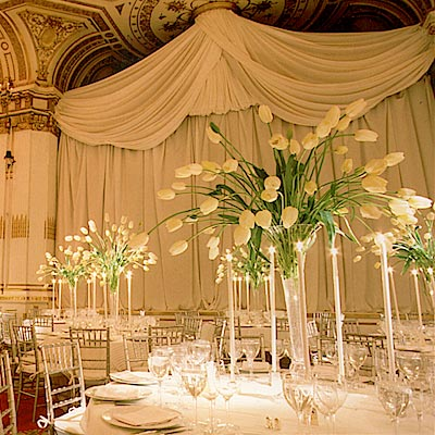 Brides Helping Brides ™ - Please post pics of Tall Calla Lilly ...