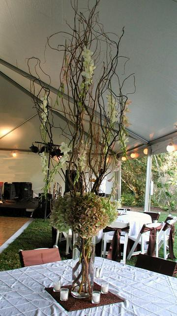 Natural wedding centerpieces images wedding decoration ideas wedding ideas with tree stump pinterest brides helping brides orchids as centerpieces liweddings natural junglespirit Image collections