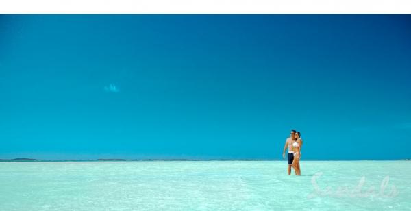 Island Shores Travel